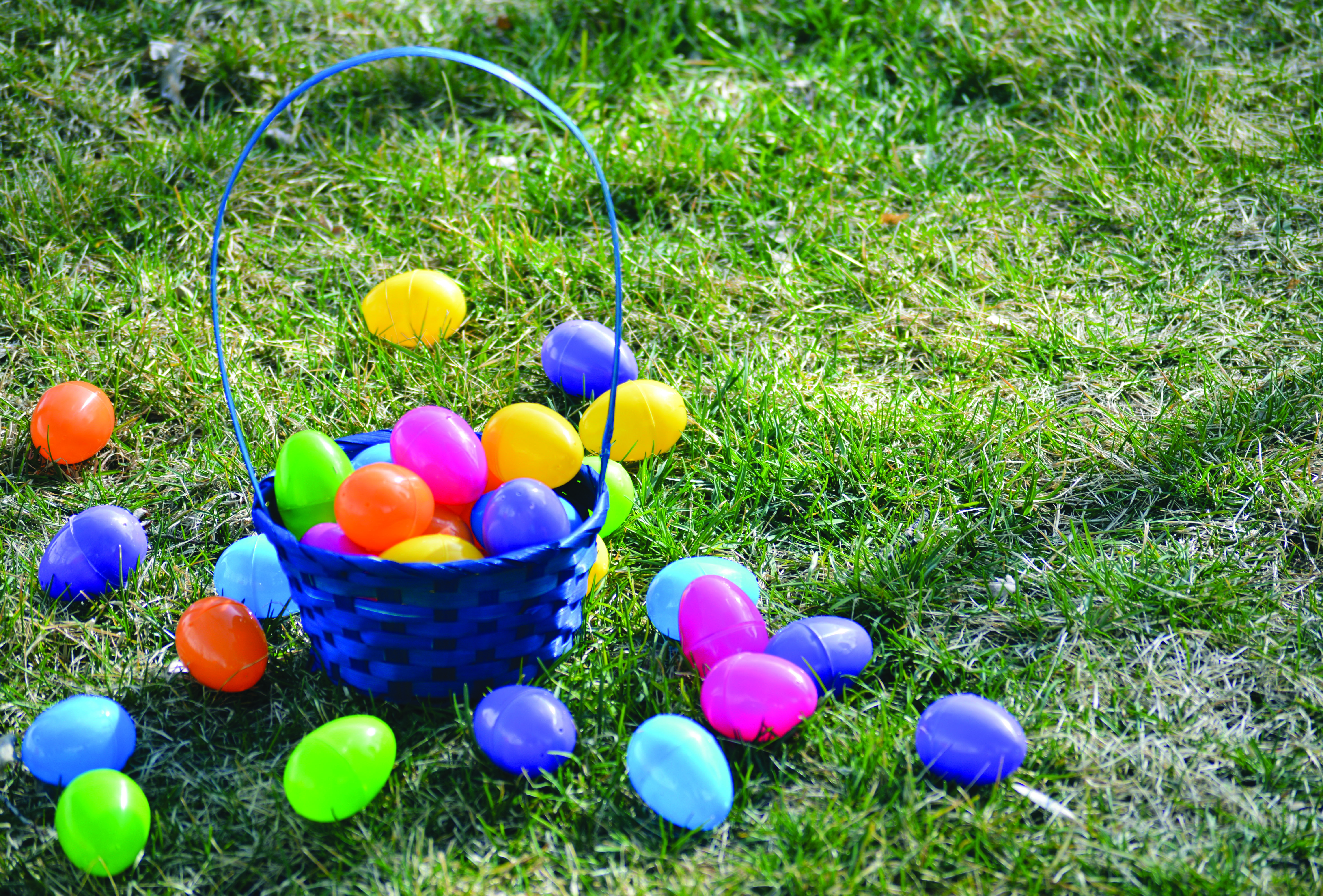 Egg hunt to be held at Porter Park