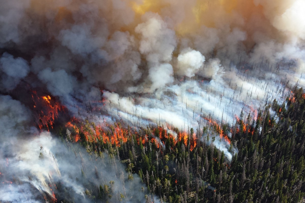 Wildfires burn out of control in Washington