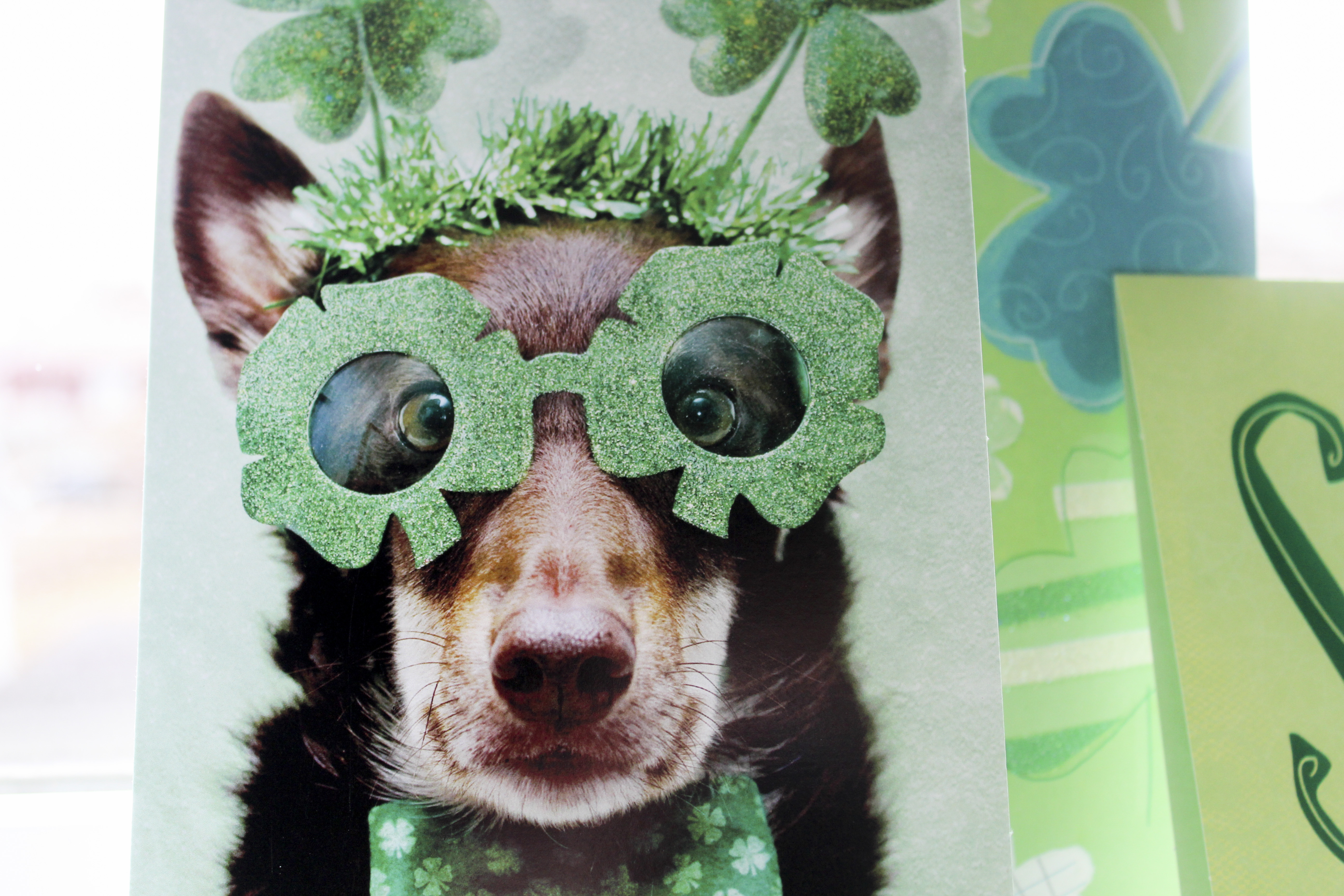 7 Things You Didn't Know About St Patrick's Day