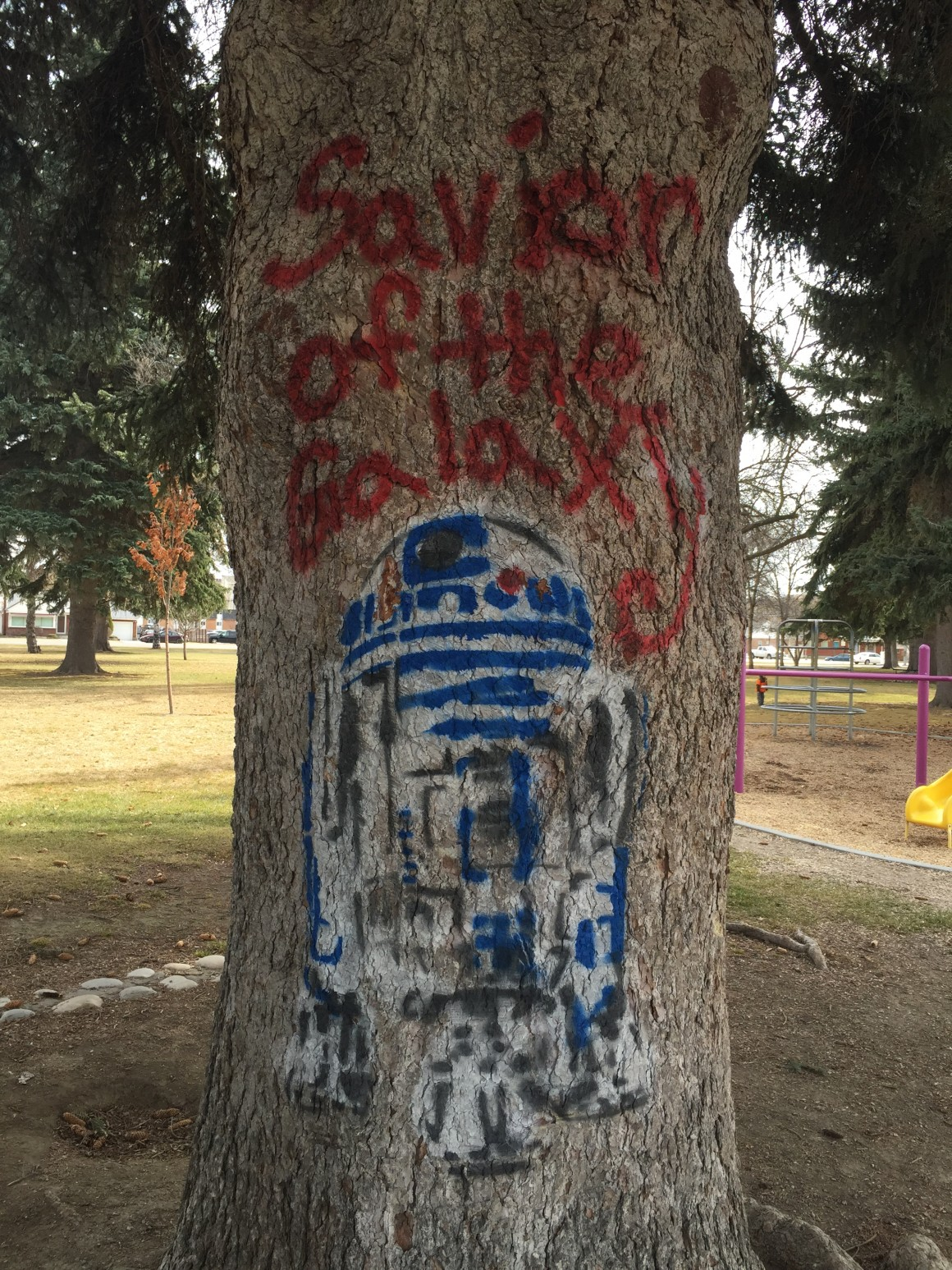 """R2D2 and """"Savior of the Galaxy, is depicted on a tree near the playground in Porter Park. (Lauren Conte, Scroll Photography)"""