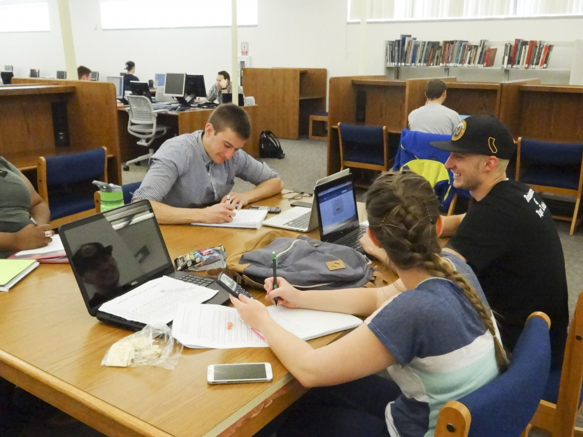 Students Studying in the Library (Cassie Gardner)