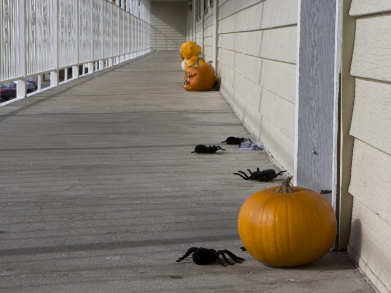 Easy and afforable ways to decorate the apartment for Halloween (Jenna Schwarz, Scroll Photography)