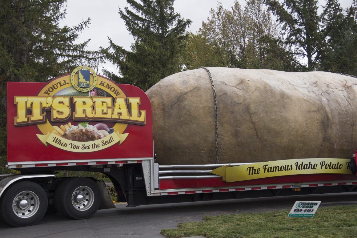 The Huge Potato