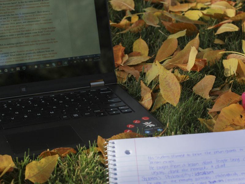 Doing homework outside (Jenna Schwarz, Scroll Photography)