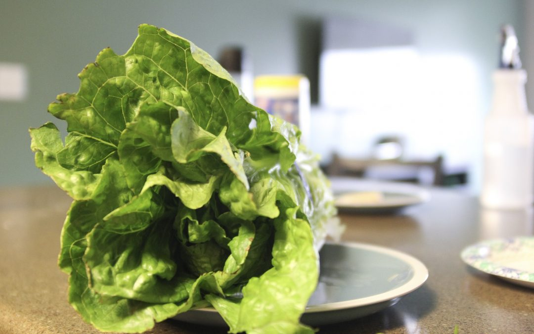 What's in your lettuce? E. Coli outbreak hits Idaho.