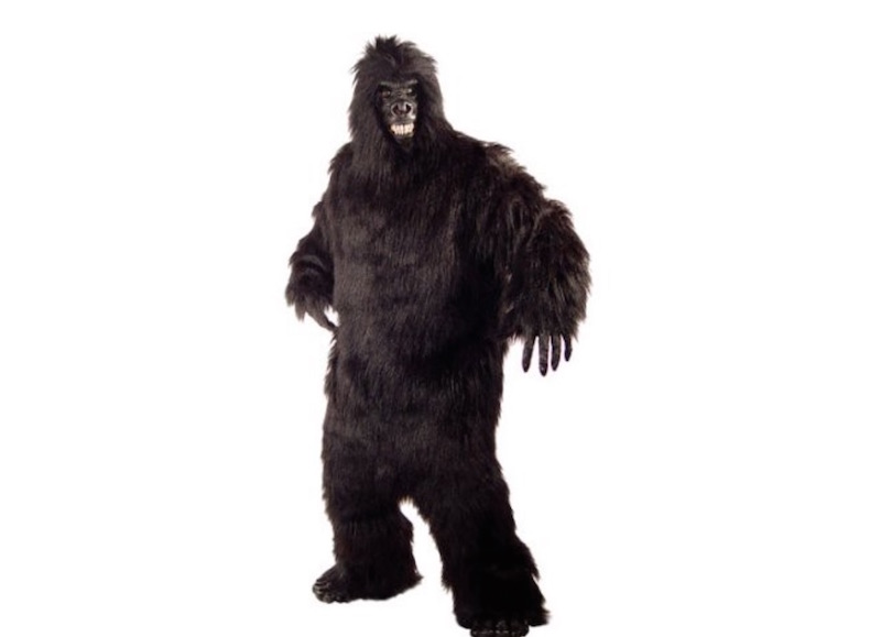 Police searching for man dressed as gorilla who burst into a BYU-I student apartment