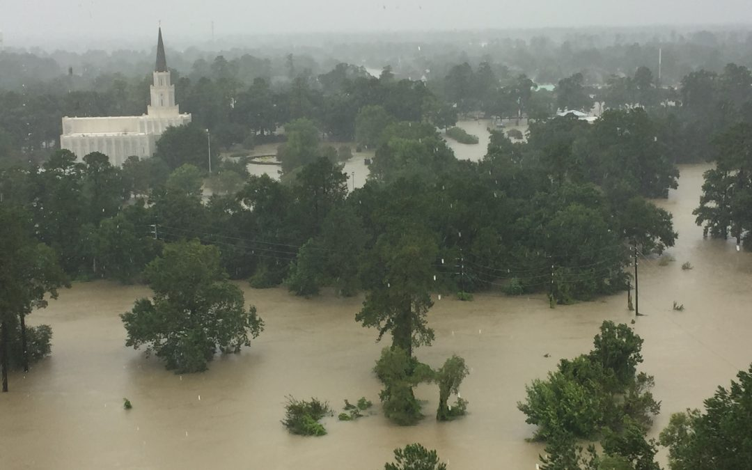 Floodwater damages Houston Temple