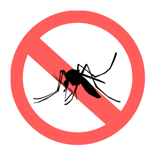 5 ways to protect yourself from mosquito bites