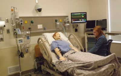 Inside the Simulation Suite
