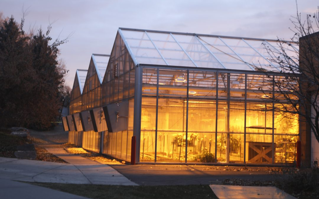 Greenhouse seasons