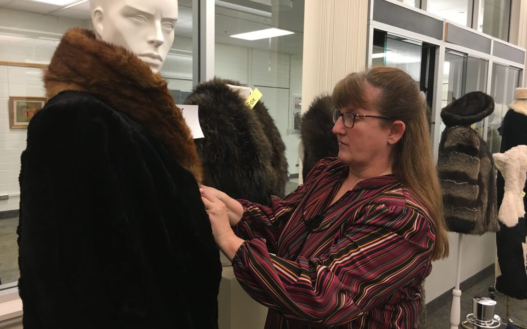 Furry friends in Special Collections