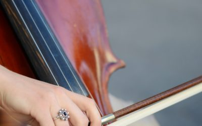 University Orchestra concert brings winter to a close