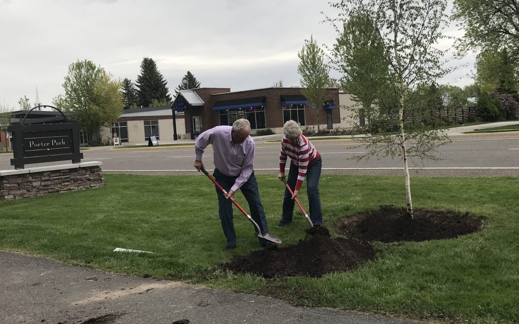 Volunteers help plant trees along the park.