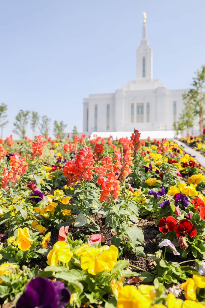 Flowers growing in front of the temple.